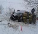 В столкновении «МАЗа» и «Лады» под Новомосковском пострадала женщина