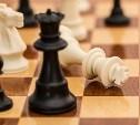 20 июля в Туле пройдет шахматный турнир