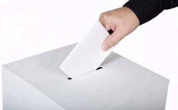 На 12.00 в Тульской области проголосовали около 195 тысяч человек