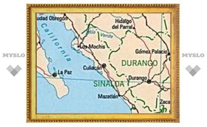 При посадке грузового самолета в Мексике погибли девять человек