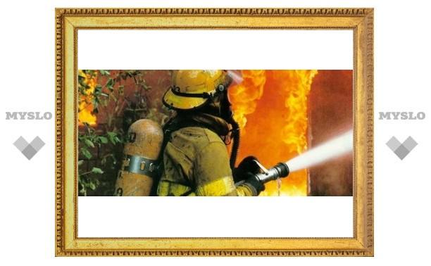 Под Тулой пожарные спасли из огня семью