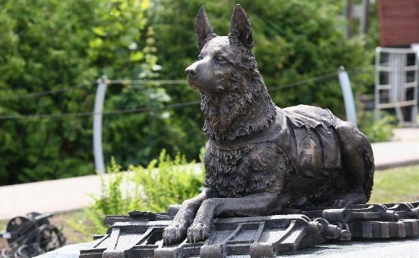 В Тульской области отметят День фронтовой собаки