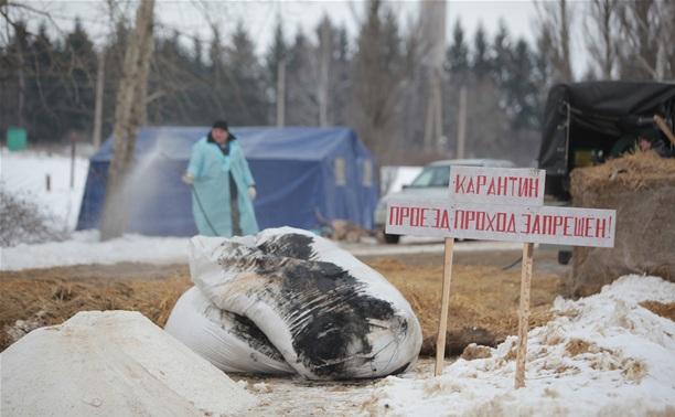 Руководство ПХ «Лазаревское» осудили за нарушения на производстве