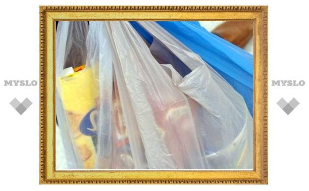 У жителя Тульской области украли пакет с продуктами