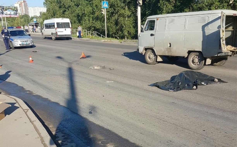 В Туле на улице Рязанской насмерть сбили пенсионерку с собачкой