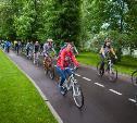 В Туле готовится концепция развития городской велоинфраструктуры