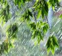 Погода в Туле 16 июля: дождь с грозой и порывистый ветер