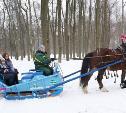 «Зима по-тульски»: парки приглашают на активный и увлекательный отдых