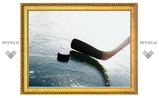 Юные хоккеисты Новомосковска выиграли турнир