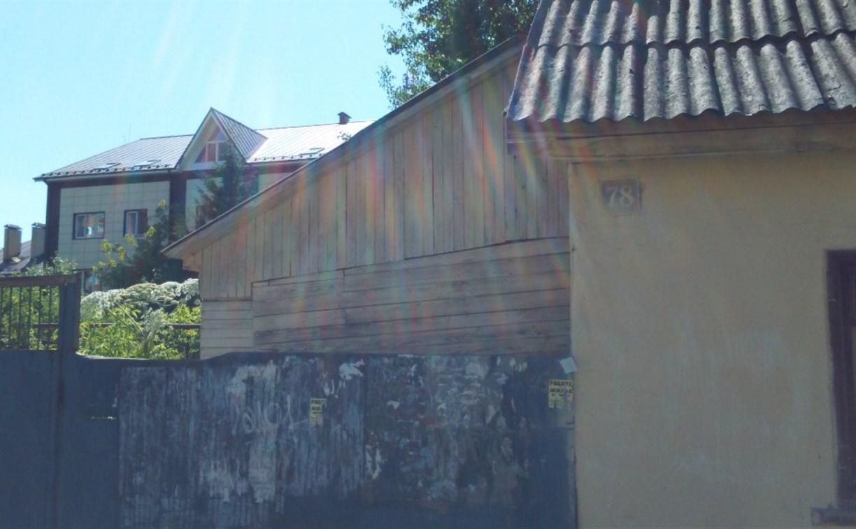 Туляки жалуются на борщевик в центре города