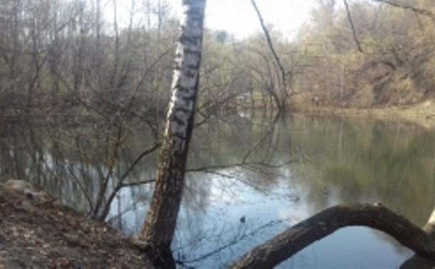 В Богородицке утонул мужчина: подробности