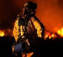 МЧС объявило о конкурсе на лучший слоган к Году пожарной охраны