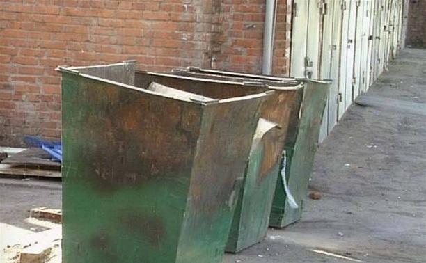 Первый «мусорный рейд» в Туле не состоялся