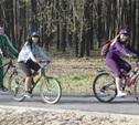 Для базы проката в Центральном парке закупят ролики и велосипеды