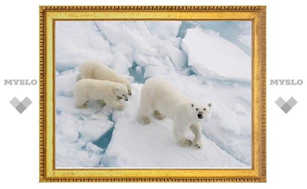 Минрегион предложил присоединить к Арктике часть Карелии и Воркуту