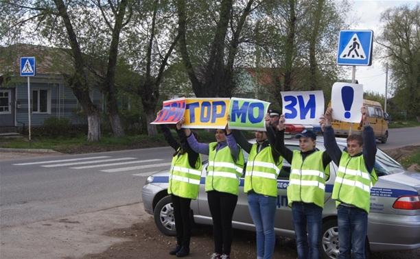 Алексинские школьники заставили водителей притормозить