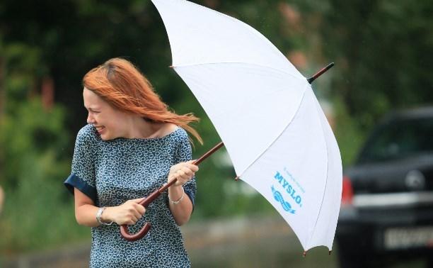 В Тульской области объявлен желтый уровень погодной опасности из-за дождей и гроз