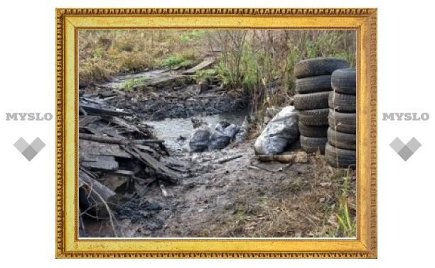 Под Тулой очистят берега Плавы
