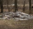 В лесу в Узловском районе обнаружена свалка ртутных ламп