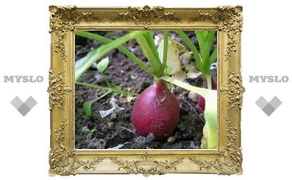 Лунный календарь на май-2009 для садоводов и огородников