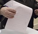 Парламент Тульской области выберут по «лепестковой нарезке»