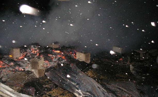 Вечером 28 ноября в Тульской области сгорели дотла два дома
