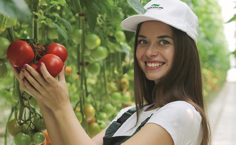 В тепличный комплекс «Тульский» требуются овощеводы и разнорабочие