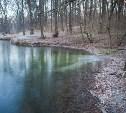 В Туле в пруд Платоновского парка вновь сливают отходы