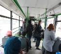 В Туле заработает горячая линия по новым маршрутам транспорта
