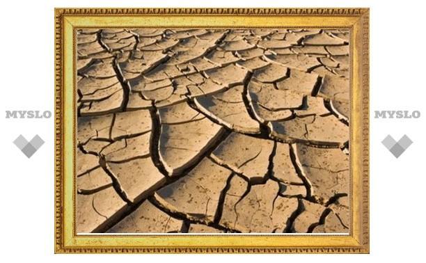 Засуха приведет к ускорению инфляции в России