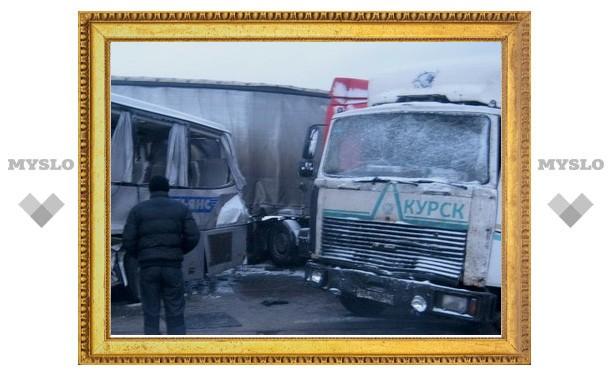 Стали известны причины крупного ДТП в Тульской области 14 марта