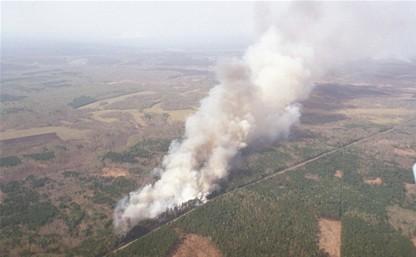 Контролировать лесопожарную обстановку в Тульской области будут при помощи беспилотного летательного аппарата