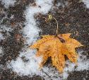Центральную Россию ждут температурные качели и ледяные дожди