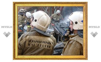 В Тульской области сгорела целая семья