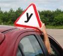 Минтранс предложил разделить водителей на любителей и профессионалов