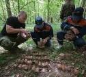 В лесу под Тулой поисковики нашли тайник с гранатами