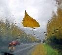 Погода в Туле 5 сентября: дождливо и прохладно