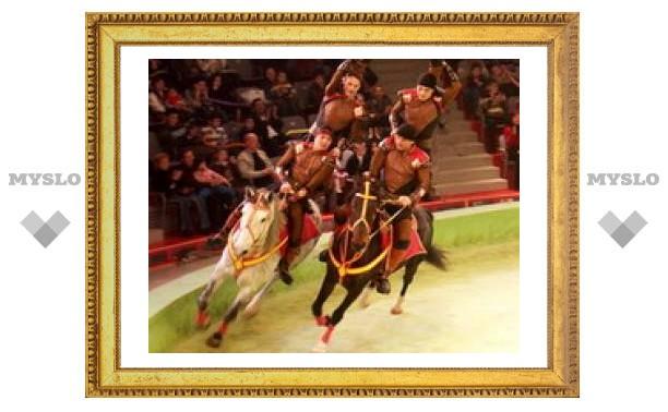 В цирке Тулы – джигиты, лошади и канатоходцы