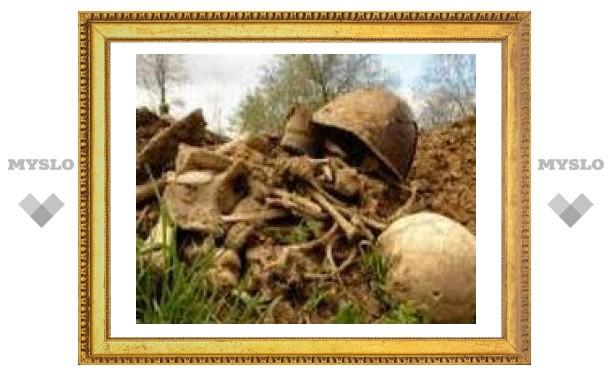 Тульские поисковики нашли двух погибших красноармейцев