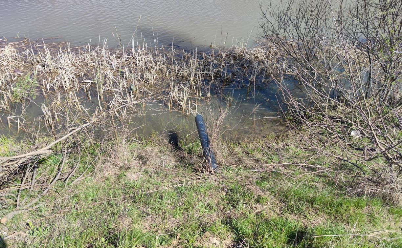 Туляки: «В Горелках в пруд сливают канализацию»