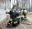 Тульские огнеборцы «потушили пожар» в Ясной Поляне
