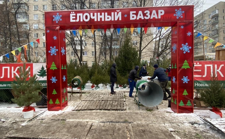 В Туле продают новогодние ёлки из Суворовского района и Пермского края