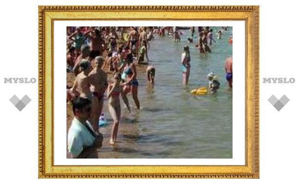 Тульских чиновников научат делать пляжи