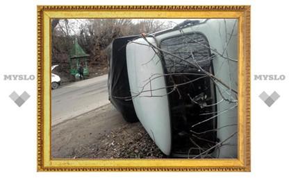 В Тульской области перевернулся грузовой УАЗ
