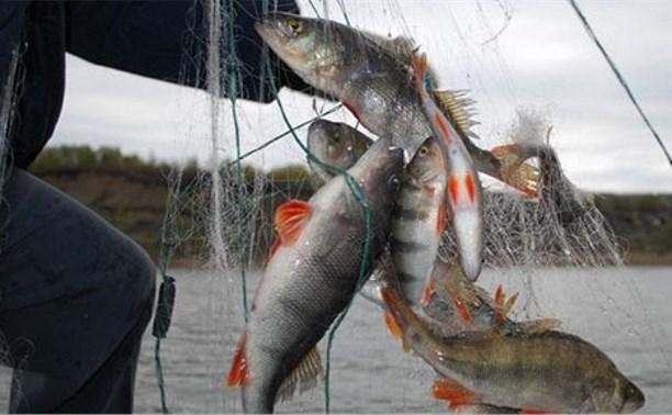 В России могут ввести электронные журналы для рыбаков