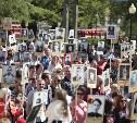 В шествии «Бессмертного полка» приняли участие 120 тысяч туляков