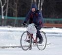 В Центральном парке Тулы открыли велодорожку
