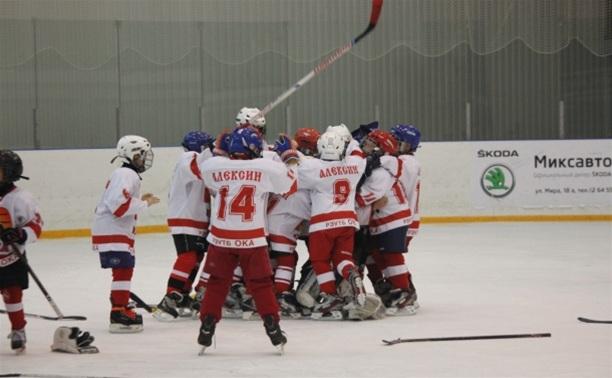 В Новомосковске юные хоккеисты разыграли Кубок «Skoda»