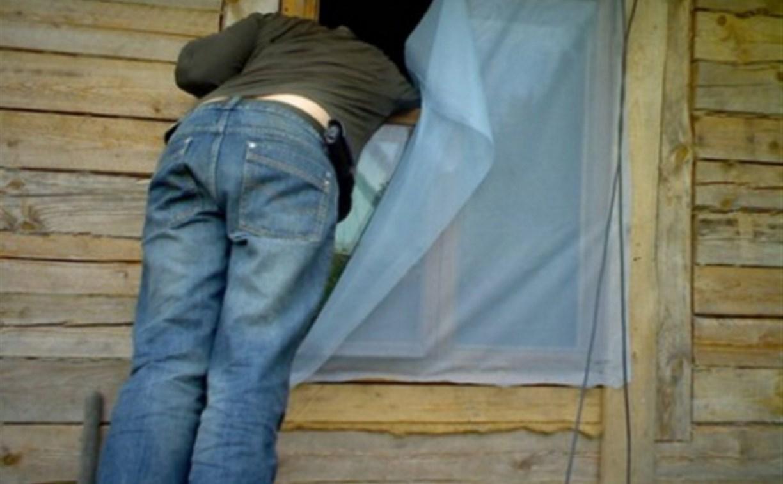 В Ясногорском районе задержан дачный вор