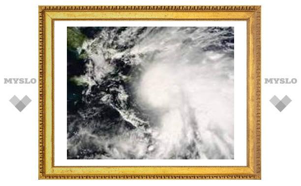 """""""Ноэль"""" усилился до урагана первой категории"""